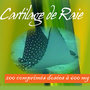 cartilage-de-raie